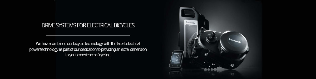 E Bike Systems Panasonic Industry Europe
